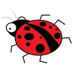 beetledrive-cr
